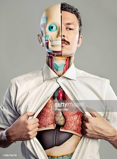 torso masculino com órgãos internos visível