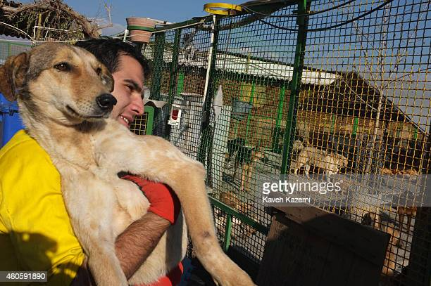 A male volunteer carries a dog back to the shelter after medical care was provided for the animal in Vafa Shelter where homeless dogs are kept and...