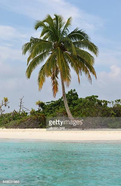 Malediven einsame Insel im Ari Atoll