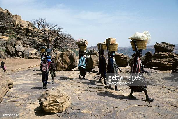 Mali Dogon Country Local Dogon Tribeswomen