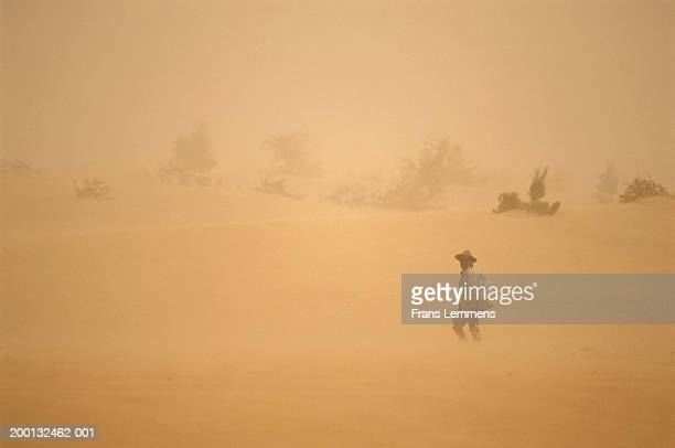 Mali, Timbuktu, Sahara Desert, Songhai man in sandstorm