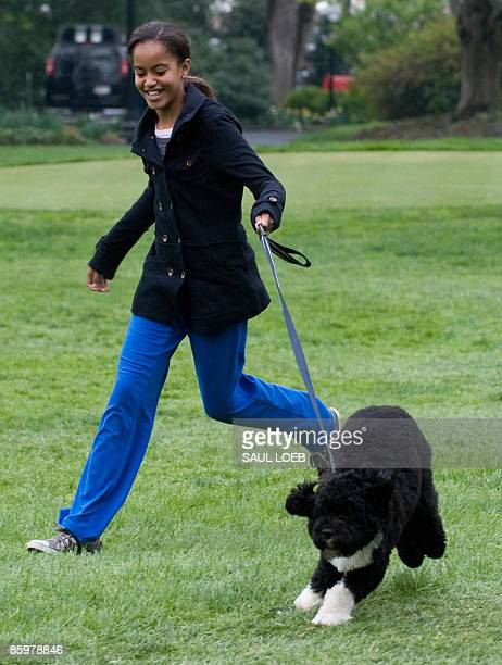 Malia Obama daughter of US President Barack Obama walks the family's new sixmonth old Portuguese water dog Bo on the South Lawn of the White House in...
