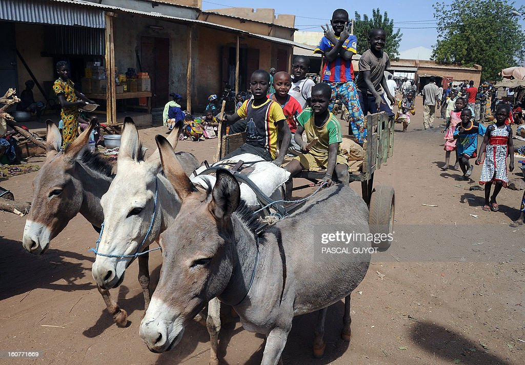 Malian children drive a donkey cart on February 5, 2013 in Douentza town centre. The town was retaken by French and Malian troops in January.