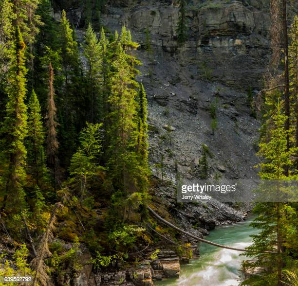 Maligne Canyon, Jasper NP, Canada