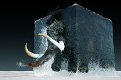 High resolution digital image of a wooly mammoth frozen in a block of ice. Mammoth is partially thawed and emerging from the ice block, and a tiny puff of breath is seen at the end of his trunk. Water