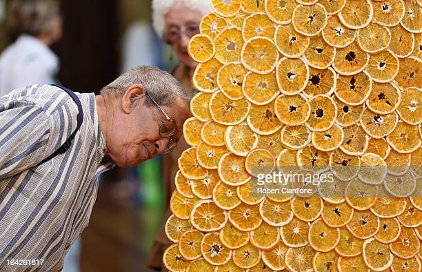 A man admires an exhibit at the 18th annual International Flower and Garden Show held at the Royal Exhibition Building and the surrounding Carlton...