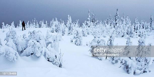 Man alone walking on snowy landscape, Canada