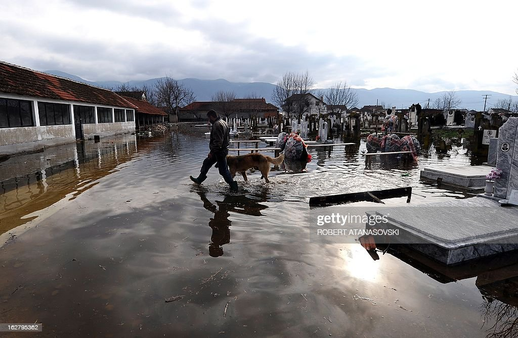 A man and a dog jump from grave to grave, trying to cross the flooded graveyard in the village of Monospitovo, in the southeastern tip of the Republic of Macedonia on February 27, 2013. The torrential rains which in the last three days poured down on the fertile Strumica Valley inundated fields and villages, destroying or damaging crops and households. Tens of people in the region are now sheltered, as their homes were gravely damaged. AFP PHOTO/ROBERT ATANASOVSKI