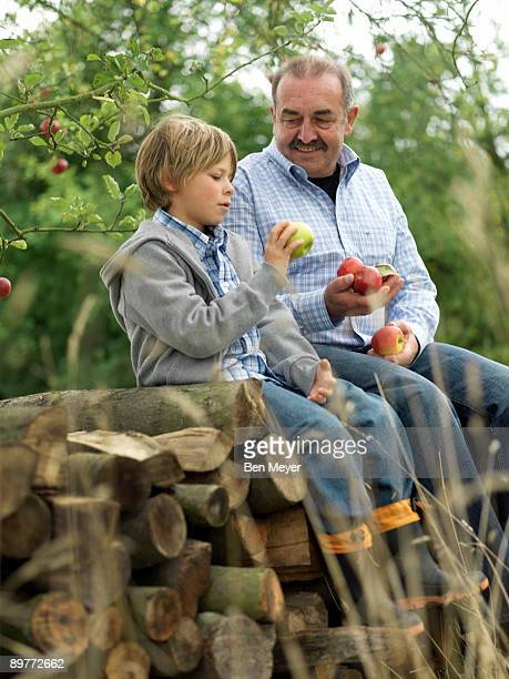 Man and boy with apples, sitting on logs
