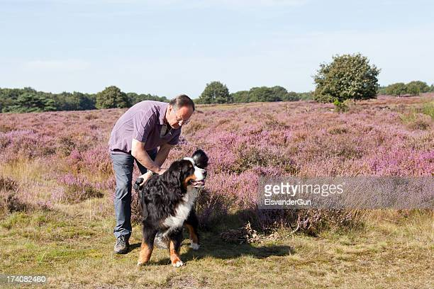 man and dog on a blooming moor