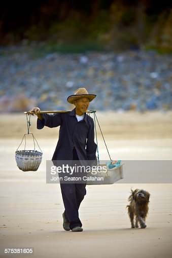 Man and dog, walking on the beach