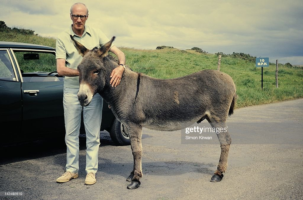 Man and donkey on road : Stock Photo