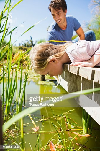 Man and girl (2-3) looking into pond from jetty : Bildbanksbilder