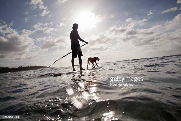 A man and his dog on a stand up paddle board