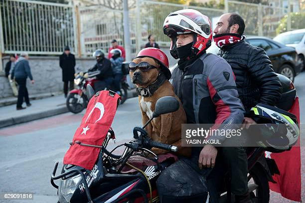 A man and his dog sit on his motorcycle bearing a Turkish flag during a demonstration against terror attacks outside the Vodafone Arena football...