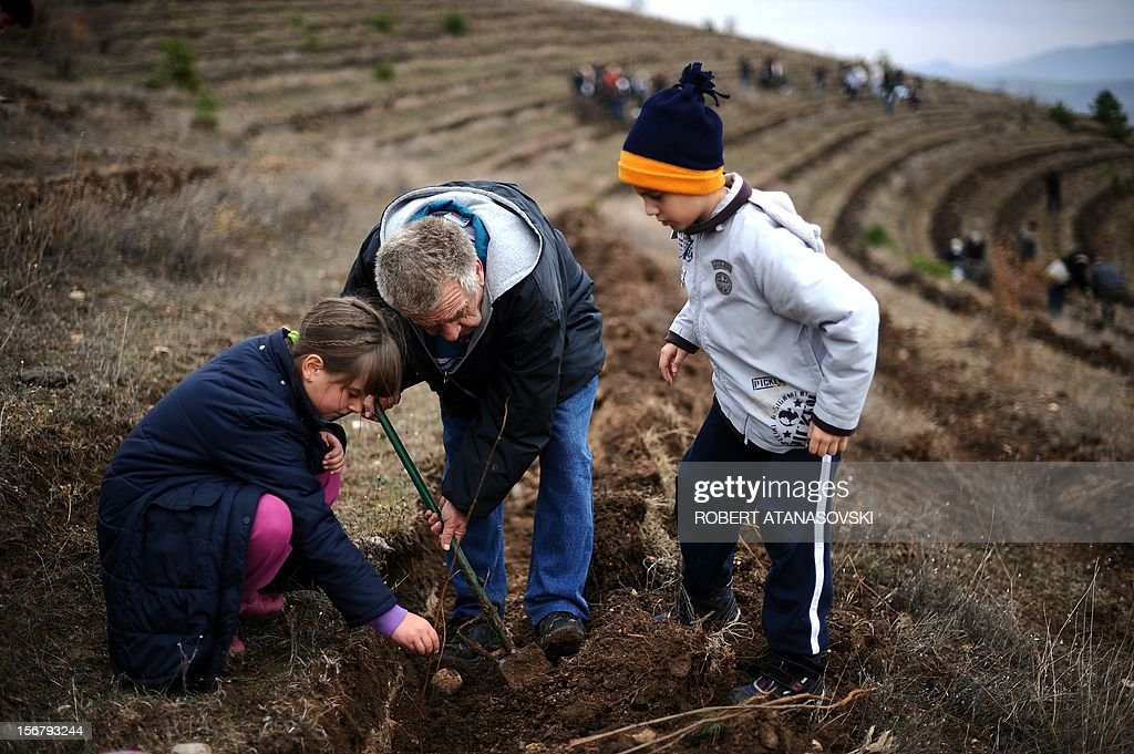 """A man and his two nephews plant a tree on a hill slope near Skopje on November 21, 2012. Macedonia is planting today about 3 million trees throughout the country under the motto """"Tree Day - Plant Your Future'. AFP PHOTO/ROBERT ATANASOVSKI"""