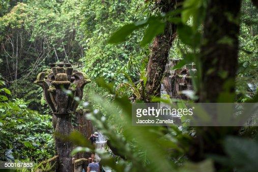 Man and jungle in Xilitla sculpture garden.