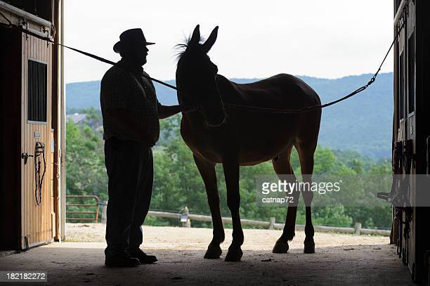 Silhouette Mule de l'homme et de l'ouverture de Porte de grange