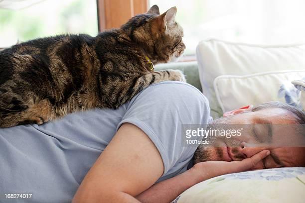 男性と旧猫: には、フェイス/ベッドルーム