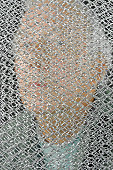 Man and Security Screen