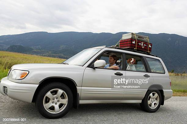 Man and spaniel in sports utility vehicle on rural road, side view