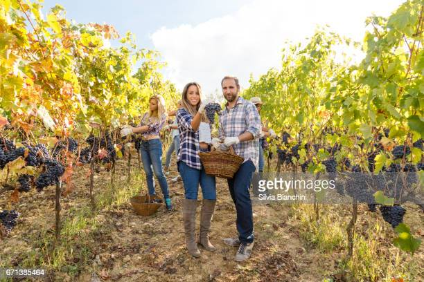 man and woman holding a basket of grapes in a vineyard in Tuscany