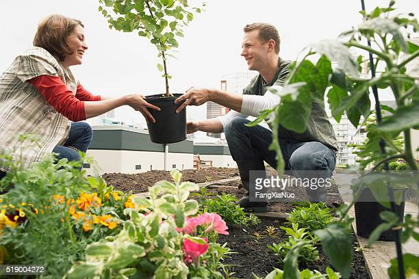 Man and woman on roof garden