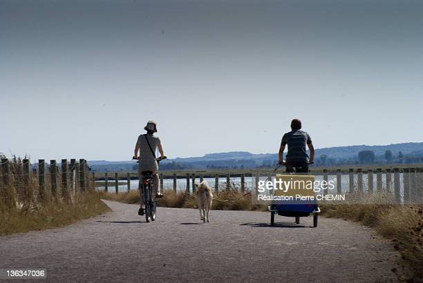 Man and woman riding cycle with dog in middle