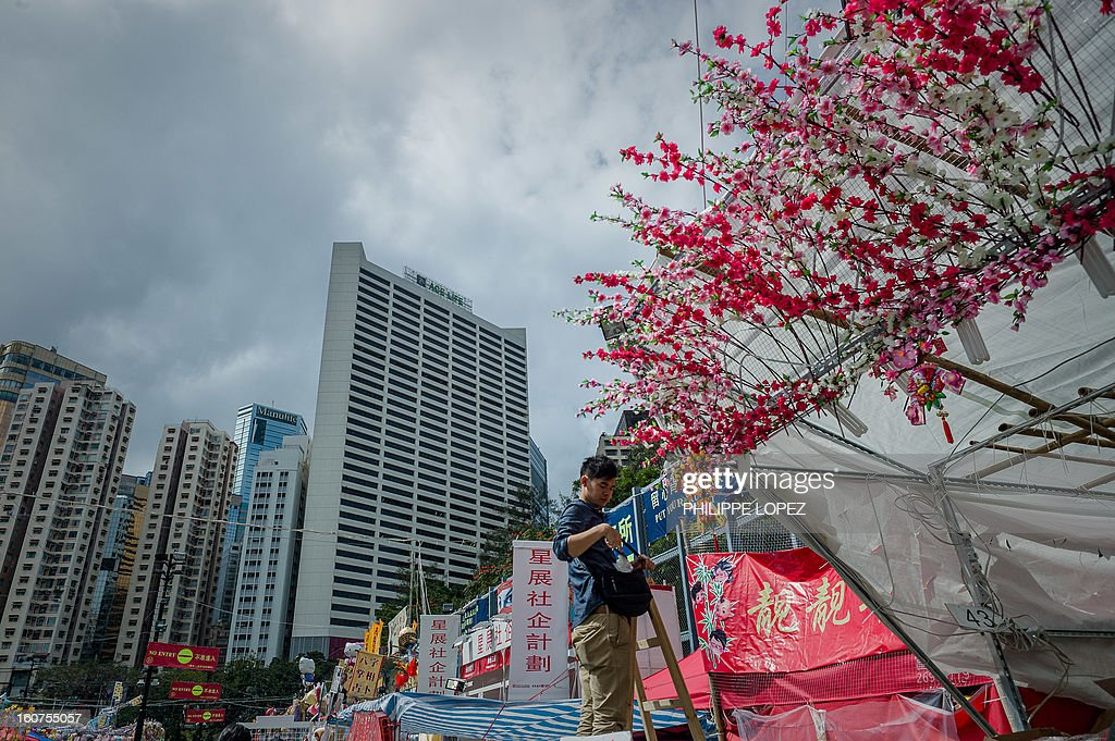 A man arranges blossoms on top of a stall at a Chinese New Year fair in Hong Kong on February 5, 2013.The Chinese New Year festival falls on February 10, 2013. AFP PHOTO / Philippe Lopez