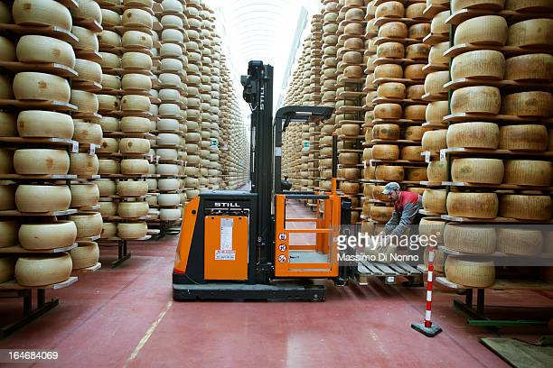 Man at work in aging warehouses of Parmesan cheese and Grana Padano cheese on January 01 2012 in Fiorenzuola d'Arda Italy The aging warehouses has a...