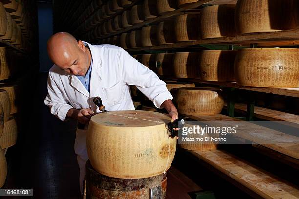 Man at work in aging warehouses of Parmesan on January 01 2012 in Fiorenzuola d'Arda Italy The aging warehouses has a total capacity of 650000 stored...