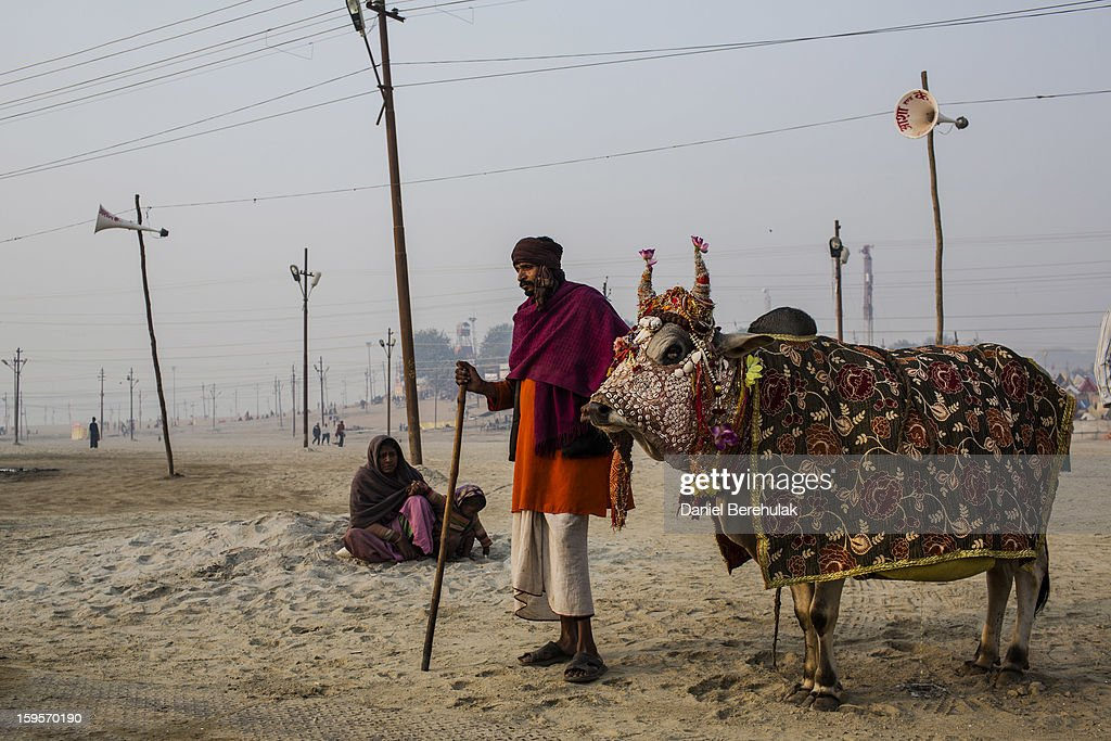 A man begs for donations as he stands with a cow on the banks of Sangam, the confluence of the holy rivers Ganges, Yamuna and the mythical Saraswati, during the Maha Kumbh Mela on January 16, 2013 in Allahabad, India. The Maha Kumbh Mela, believed to be the largest religious gathering on earth, is held every 12 years on the banks of Sangam, the confluence of the holy rivers Ganga, Yamuna and the mythical Saraswati. The gathering is celebrated at the holy site of Sangam in Allahabad over 55 days and attracts over 100 million people.