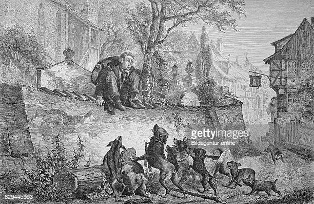 Man being afraid of dogs historic wood engraving ca 1880