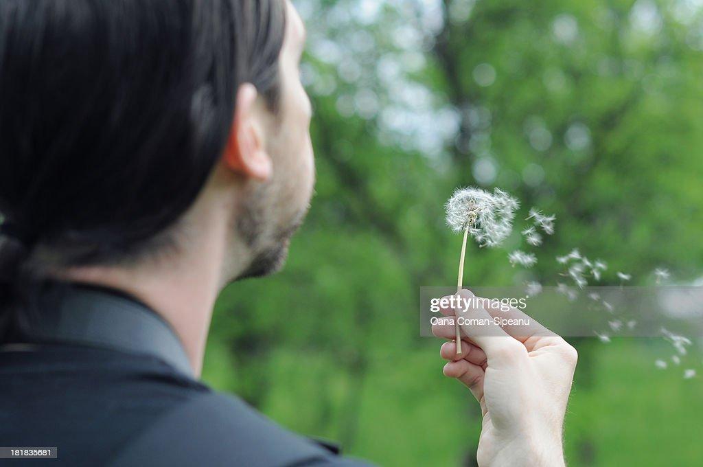Man blowing dandelion seeds