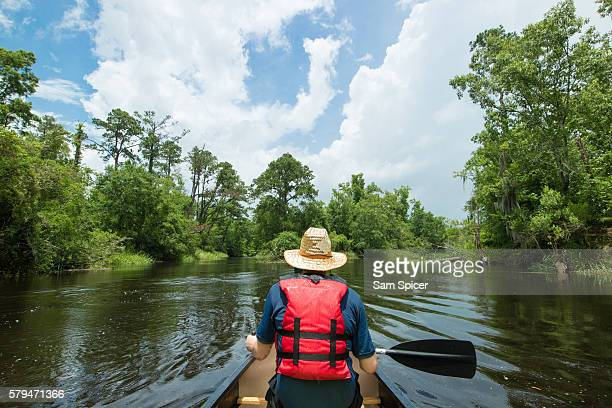 Man canoeing through wetlands in Louisiana