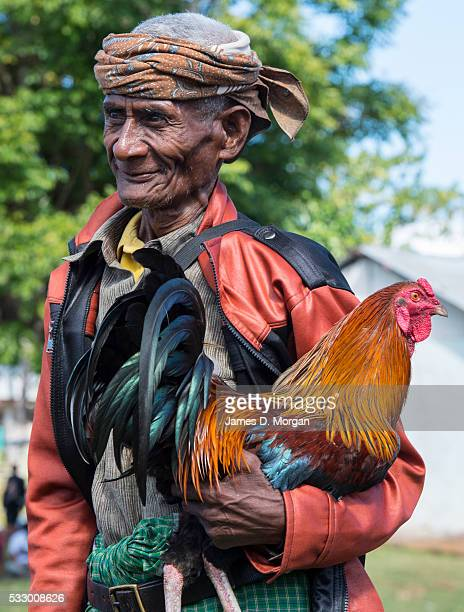 A man carries a cock as local Timorese celebrate the anniversary of Independence Day on May 20 2016 in Balibo TimorLeste Today marked the 14th...