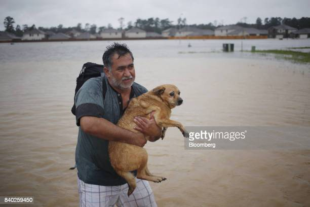 A man carries a dog after being rescued from rising floodwaters due to Hurricane Harvey in Spring Texas US on Monday Aug 28 2017 A deluge of rain and...