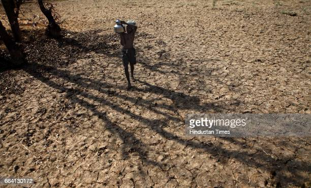 A man carries water on parched land near Shivajinagar in Jawhar taluka Water scarcity has hit the region with people having to walk several...