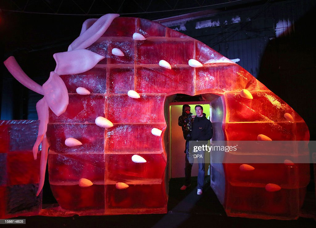 A man carrying a child stand in an giant strawberry sculpture built of ice at an adventure farm in Roevershagen, northern Germany, on December 21, 2012. The ice sculptures partly made of red ice are on exhibition until March 3, 2013.