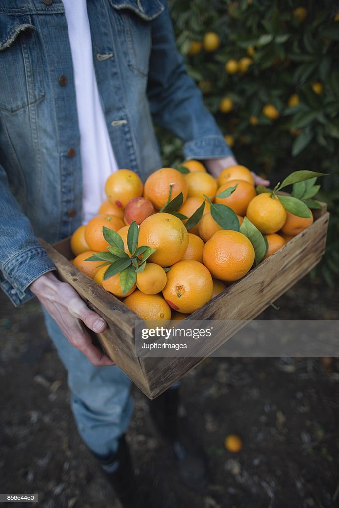 Man carrying a crate of oranges : Stock Photo