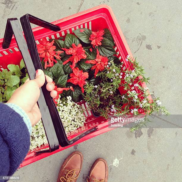Man carrying a shopping basket with Flowers