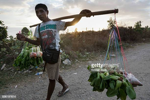 A man carrying freshly harvested vegetables to town in the setting sun outside Dili capital of Timor Leste