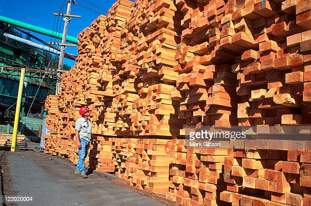 Man checking lumber stack, Fortuna, CA