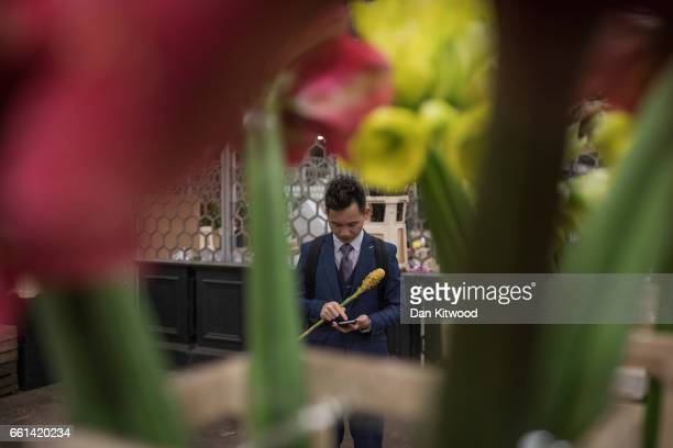 A man checks his phone as he stands on his stall on the final full day of trading at London's 'Covent Garden Flower Market' on March 31 2017 in...