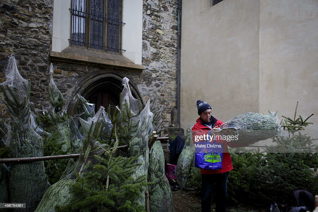 A man chooses a Christmas tree at an outdoor Christmas tree stall on December 21, 2013 in Prague, Czech Republic. Czechs have bought on average milion of Christmas trees every year.
