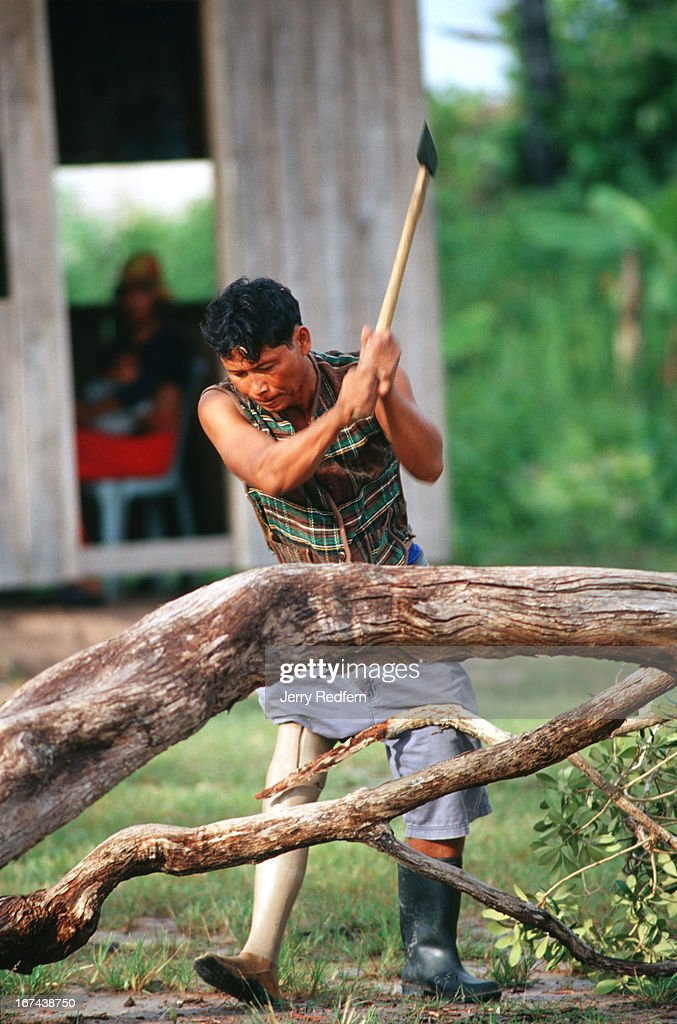 "A man chops a windfall tree in the main part of Veal Thom village. Deep in the hinterlands, down a rutted dirt road, a small village shelters the remnants of Cambodia's civil war. Some 200 disabled veterans - both Khmer Rouge and government soldiers - and their families have moved to Veal Thom, or ""Big Field."" There they build huts, grow rice, cultivate flowers and do what society will not allow in their homelands: live in peace. Though they lost limbs and parts of their lives in Cambodia's civil war, their wounds mark them as outcasts in the Cambodian society.."