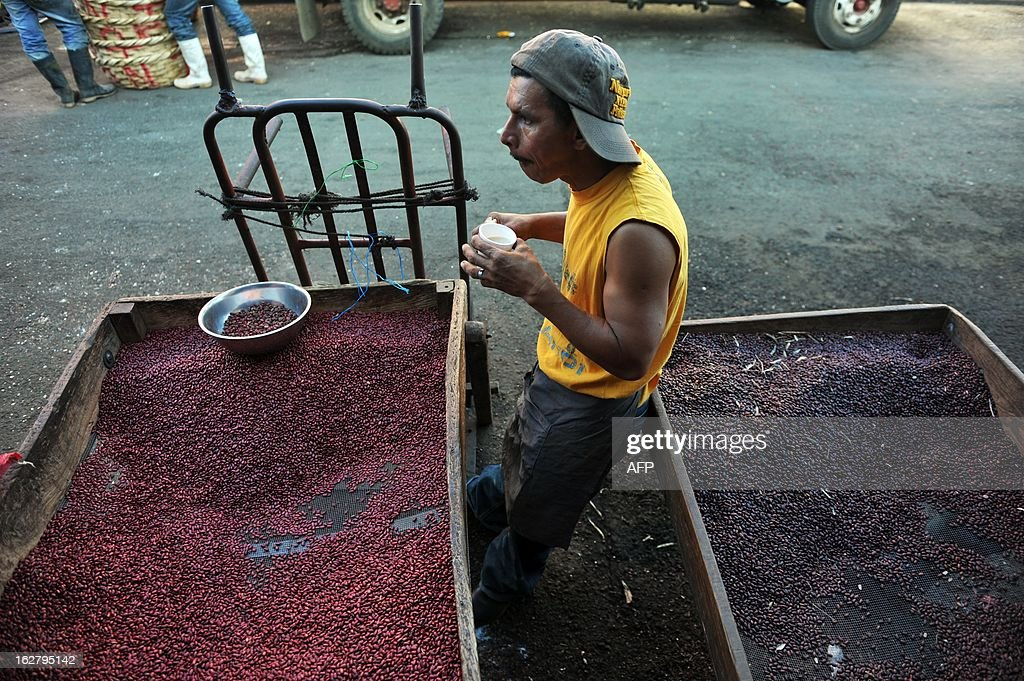 A man cleaning beans has breakfast at the Oriental Market, the biggest market in Managua, on February 27, 2013 AFP PHOTO/Hector RETAMAL