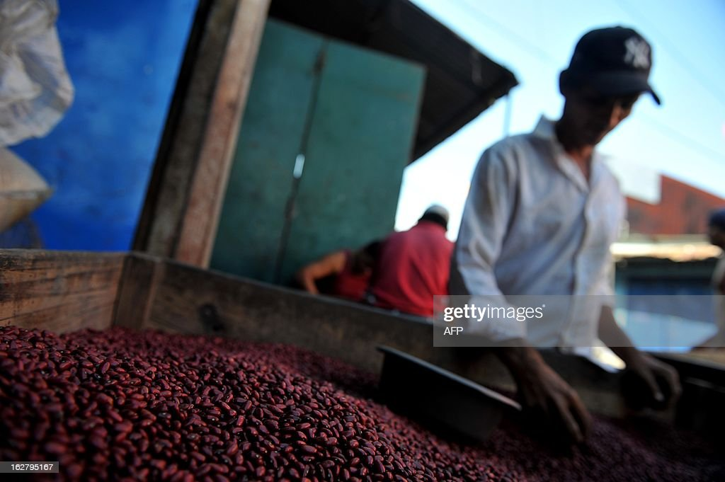 A man cleans beans at the Oriental Market, the biggest market in Managua, on February 27, 2013 AFP PHOTO/Hector RETAMAL