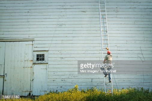A man climbing a ladder propped against a clapboard barn or farm building.