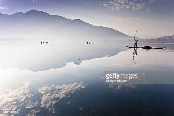 Man collecting weeds from Dal Lake.